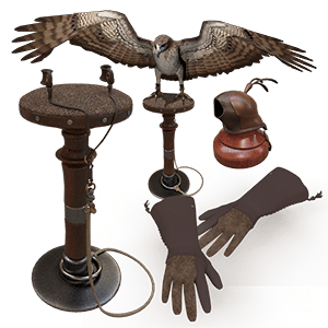 Falconry Kit